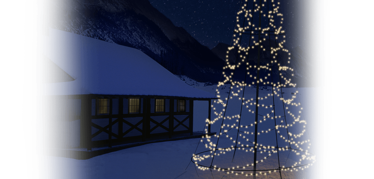 Header beeld Fairybell kerstbomen overzicht